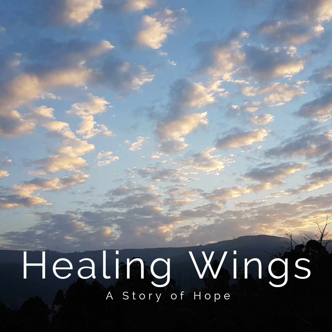 Healing Wings - A Story of Hope