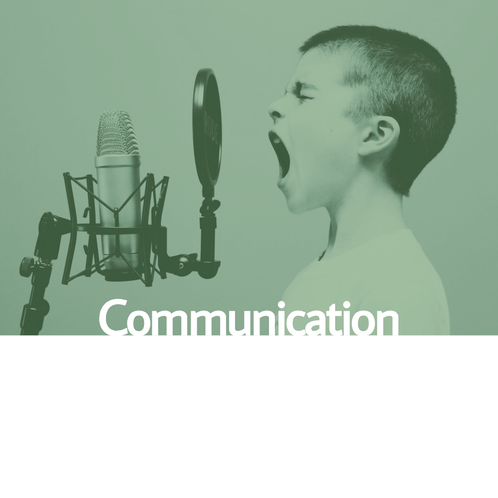 Communication Recovery Article